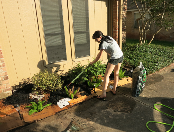 Yard is Hard, Part III: DIY Cardboard Mulching - evanandkatelyn.com