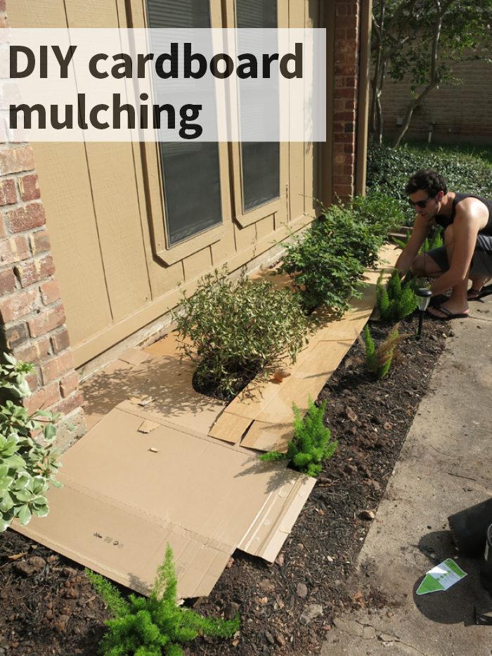 DIY cardboard mulching - evanandkatelyn.com