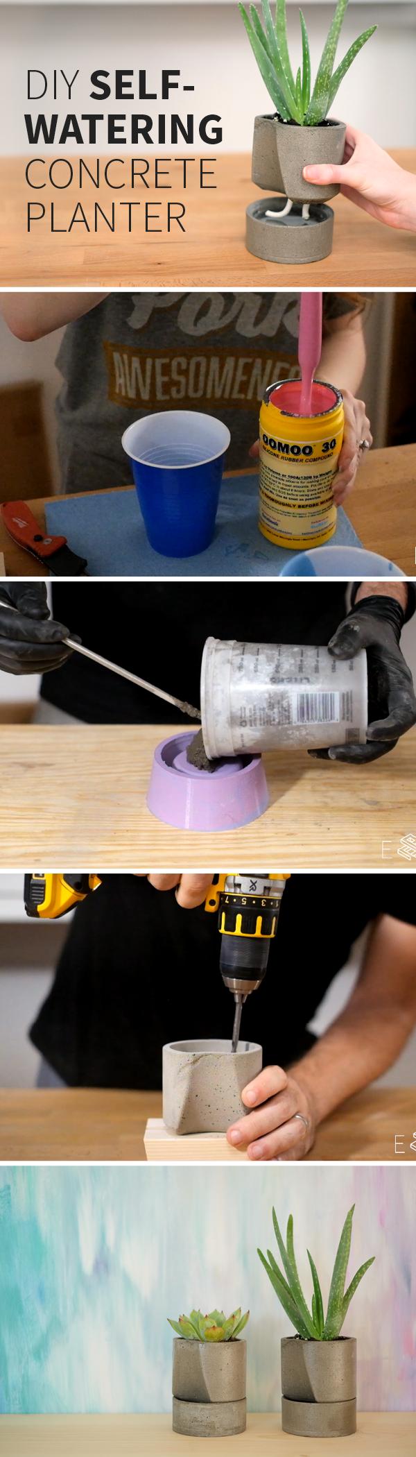 DIY Self Watering Concrete Planter